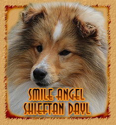Smile Angel Chieftan Dayl