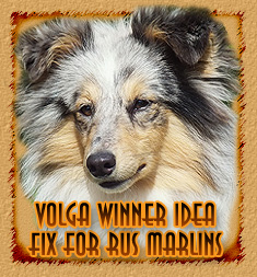 personal page Volga Winner Idea Fix For Rus Marlins