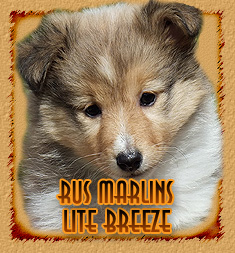 personal page Rus Marlins Lite Breeze