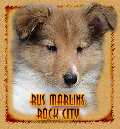 Rus Marlins Rock City