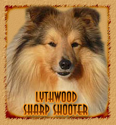 Lythwood Sharp Shooter